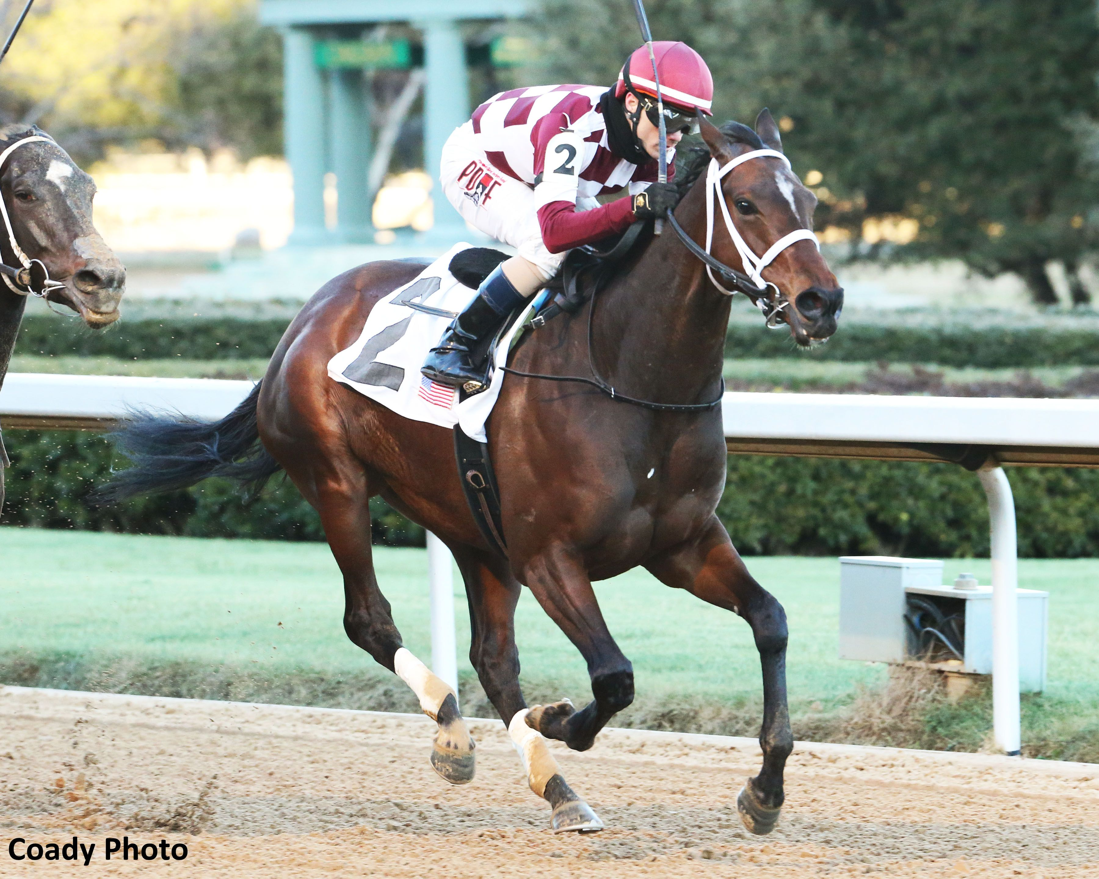 Coffeepot Stables Farrell Began Her 4 Year Old Season Just Like She Ended Her 3 Year Old Campaign By Winning A Stakes Using Her Pr Horse Racing Horses Racing