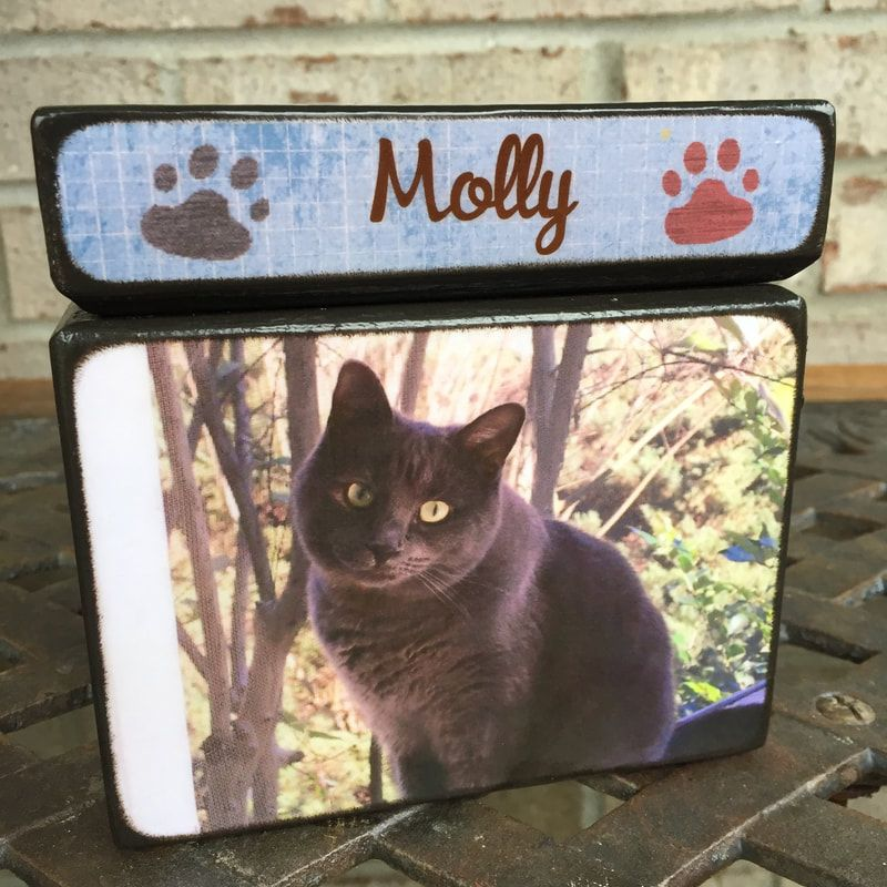 Personalized Photo Cremation Urns and Keepsakes Cat urns