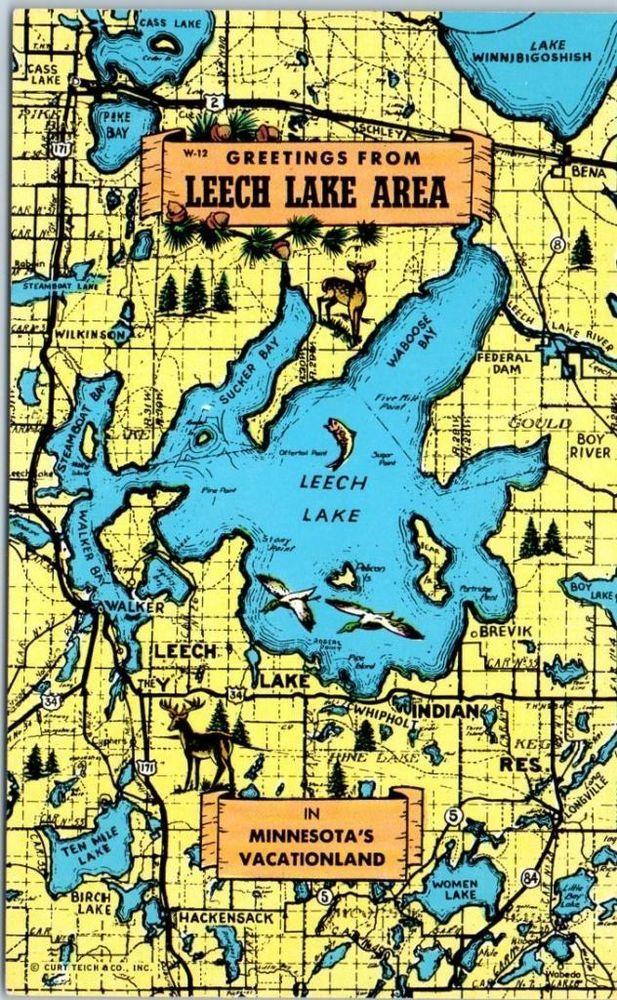 Leech Lake Minnesota Postcard Greetings From Leech Lake Area W Map C1960s Minnesota Travel Postcard Lake