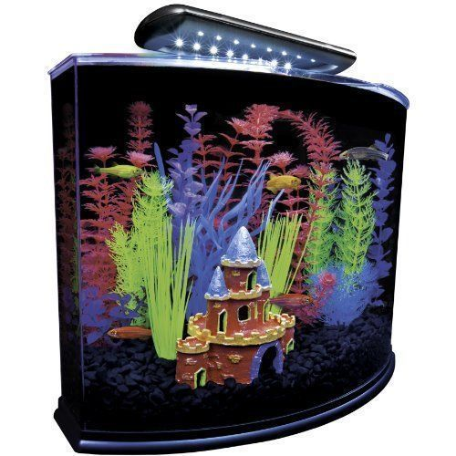 Aquarium Fish Tank Kit With Blue Led Light Filter 5 Gallon Home Decoration Listing In The Aquariums Tanks Fish Pets Hom Aquarium Kit Aquarium Aquarium Fish Tank