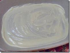 Crema chantilly (senza uova )bimby
