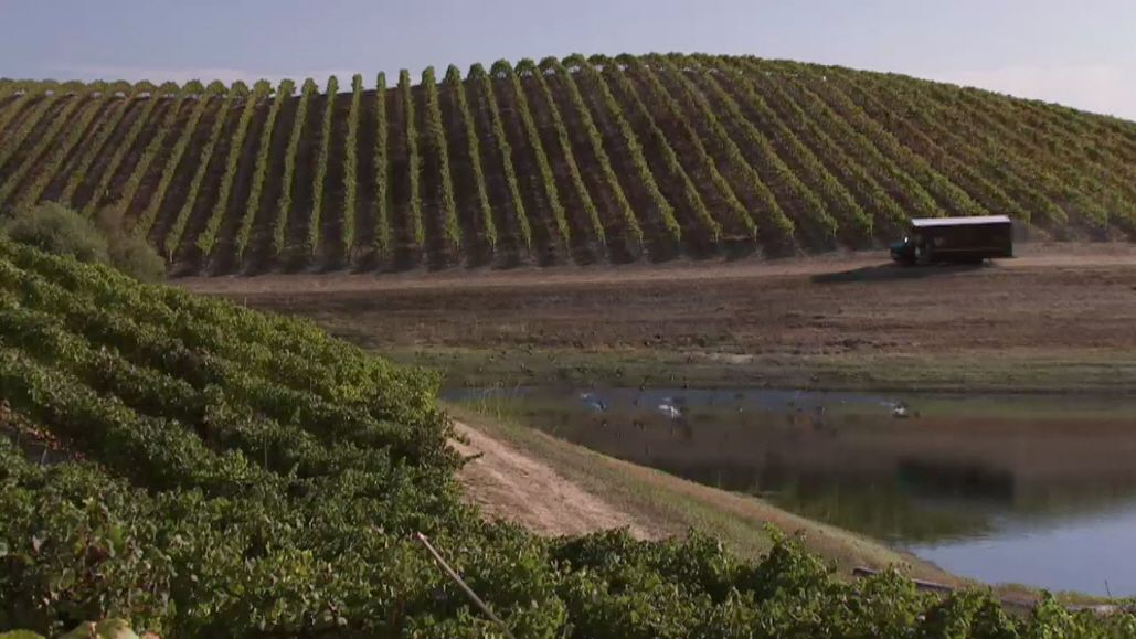 The value of sustainability resonates with winery [video]