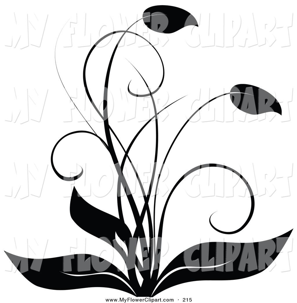clip art black and white clip art of a elegant black and white rh pinterest co uk elegant clip art free images elegant clip art free