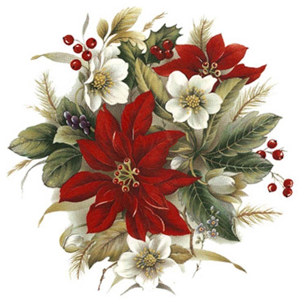 Цветы для новогодней открытки, магазин