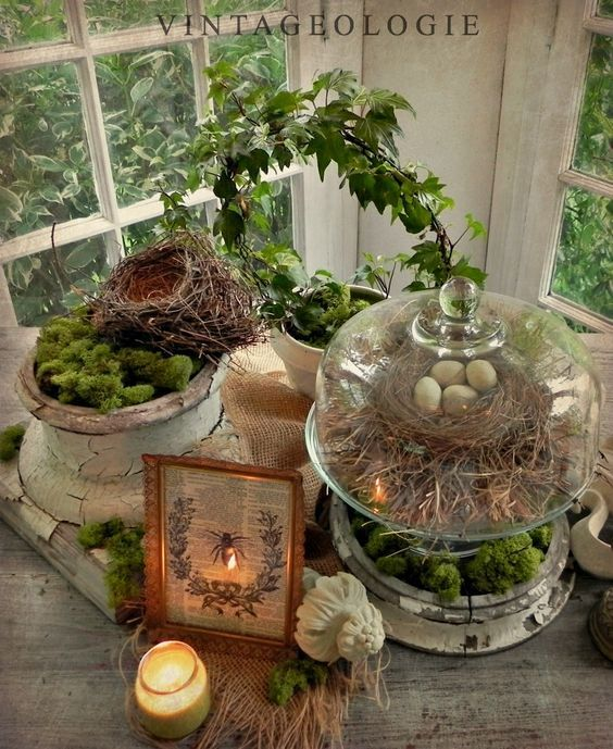 Organic Table Top Vignette With Natural Elements Of Moss