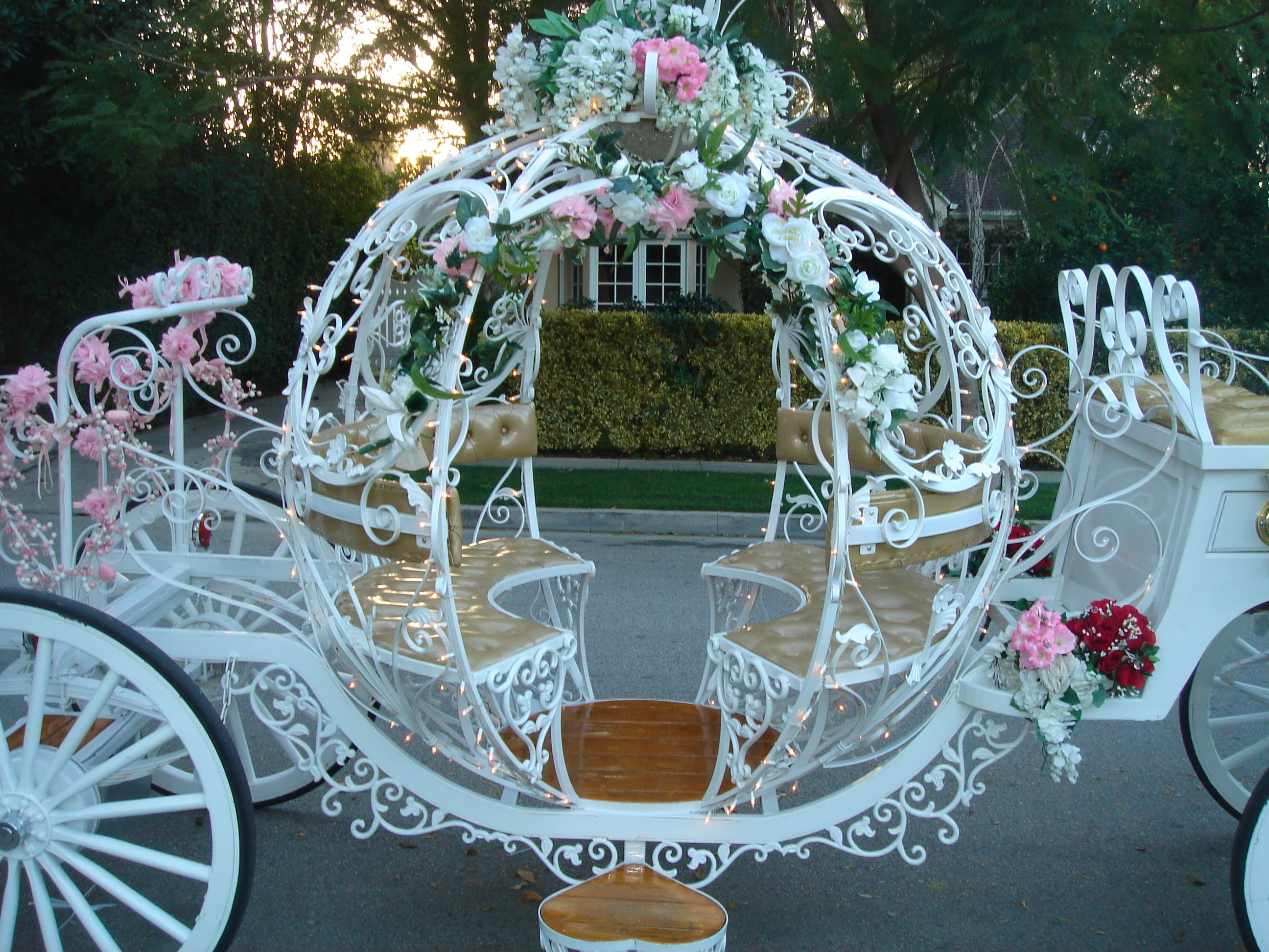 Cinderella Wedding Carriage | Click here forvideos, photos and ...