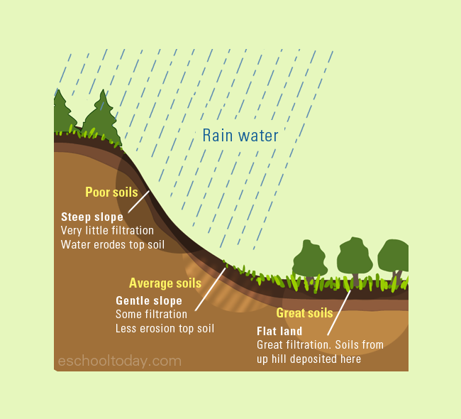 Factors Affecting Soil Formation How Does Relief Affect The Formation Of Soils Soil Soil Layers Earth Science