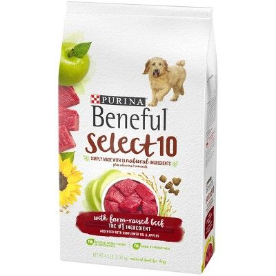 Beneful Select Dry Dog Food Beef Flavor 4 5lb Products Dog