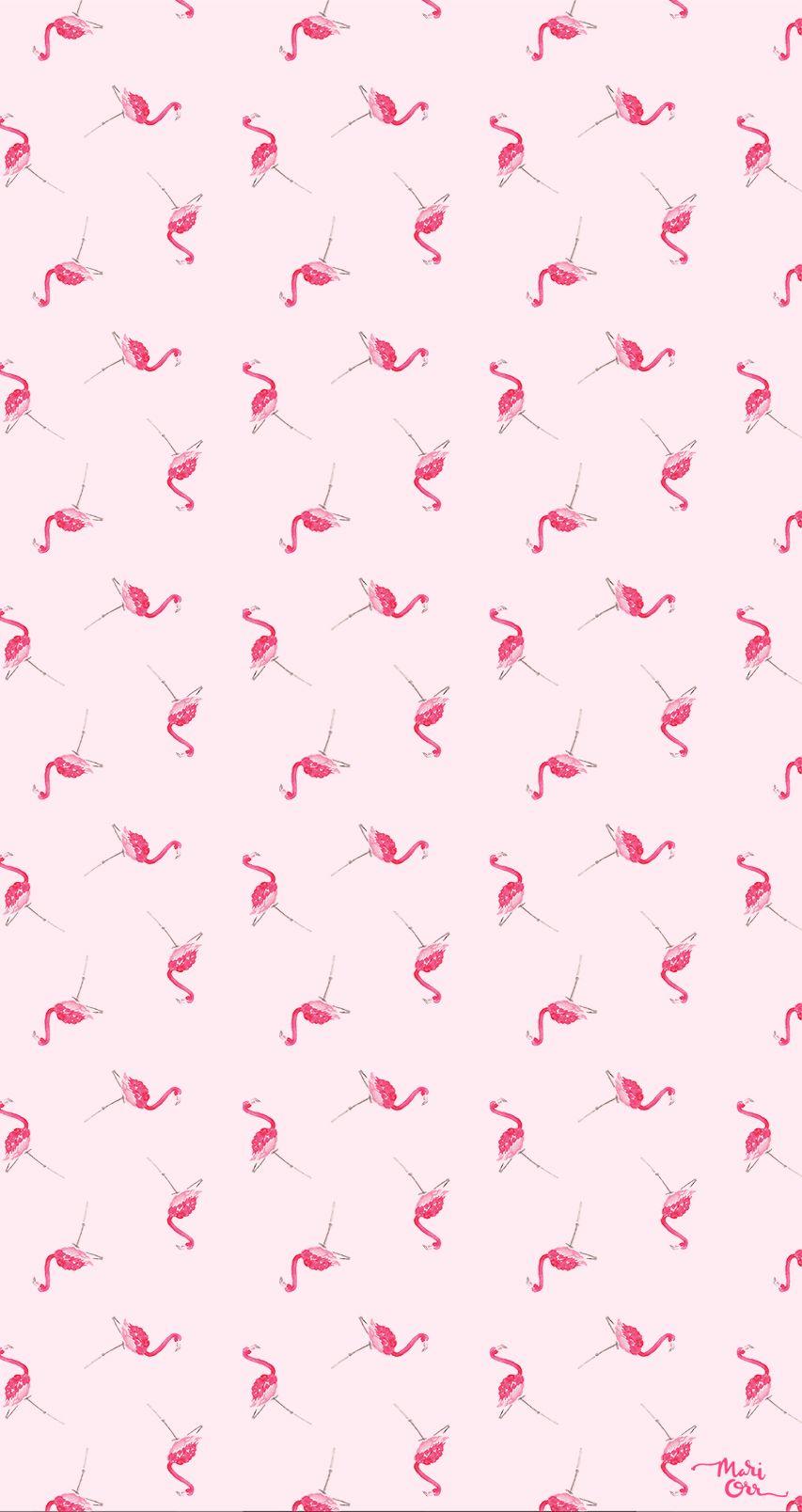 Background flamingo flamingos iphone wallpaper wallpaper - Ohsobeautifulpaper Com Wp Content Uploads 2015 03 Mari Orr Pink Flamingo Iphone Backgroundsiphone