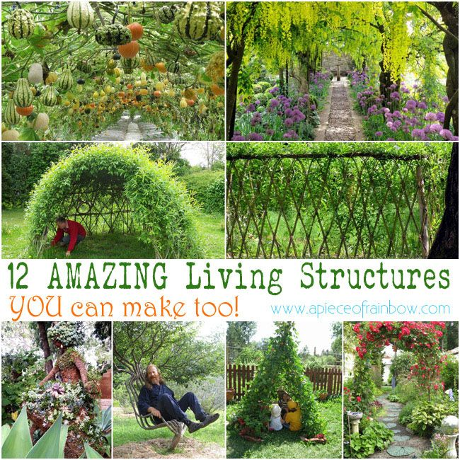 dafcf4c83d15e11cb09b0672e291d106 - How To Make A Living Gardening
