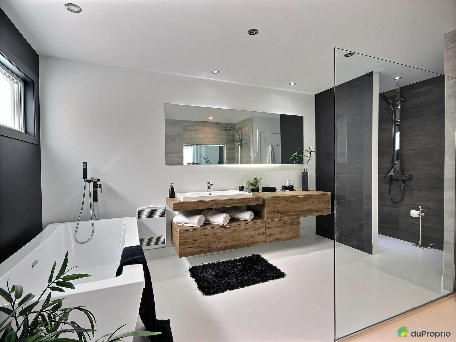 Salle de bain de r ve annex e la chambre de ma tre salle de bain noire et blanches de style - Salle de bain image ...