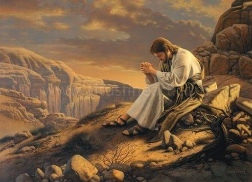 Jesus alone in the wilderness, praying. | Jesus praying, Jesus ...