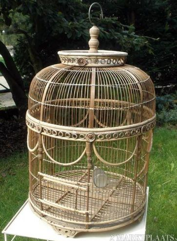 Pin Op Bird Cages Aviaries And Terrariums