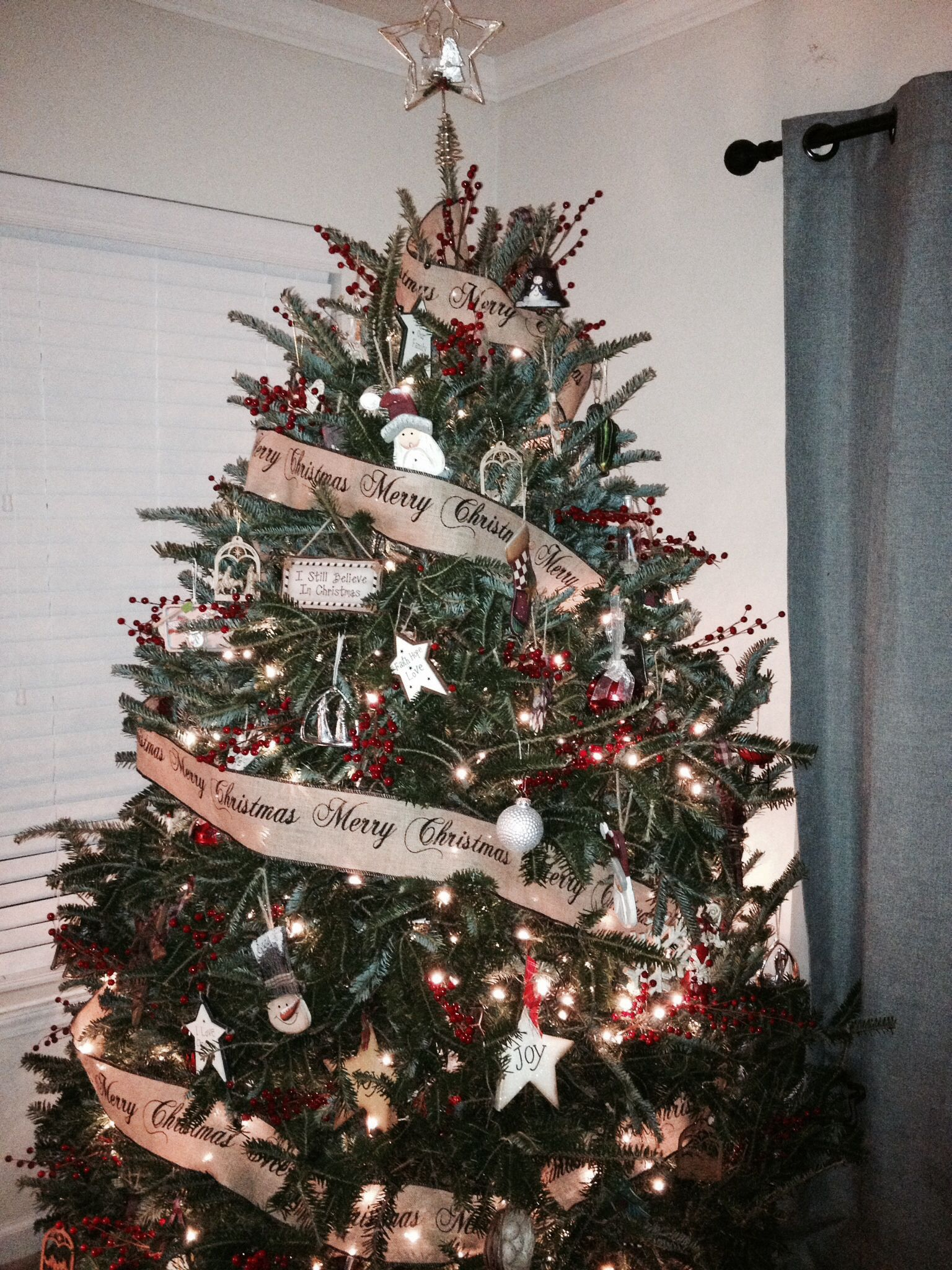 Traditional Christmas tree. 7' with 700 lights and about 110 ornaments.  It's a Frazier Fir.