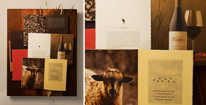 Bonterra Vineyards : kate arends | Branding design, Brand ...