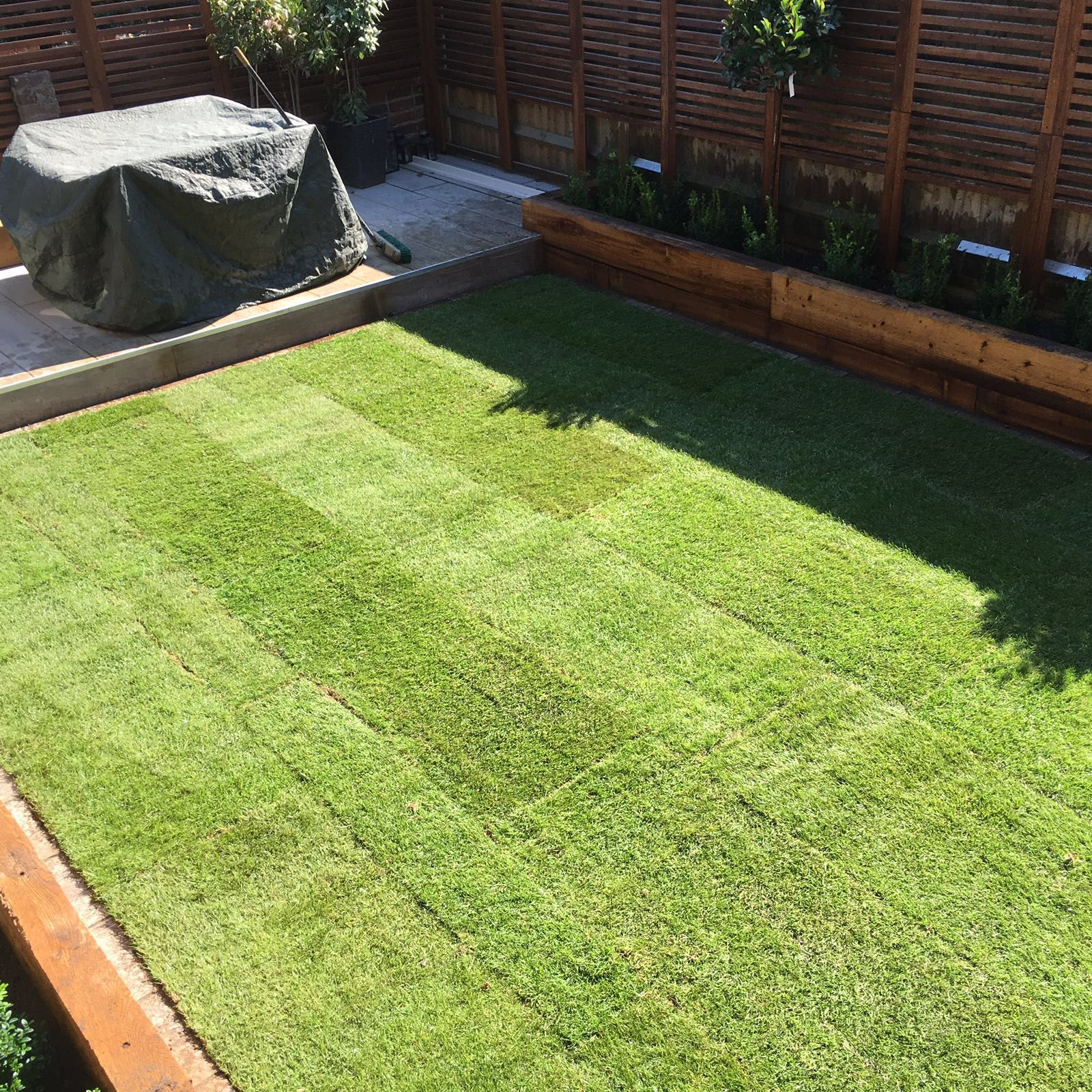 Landscaping: Rolawn Medallion Turf Laid In This Garden. New Lawn.