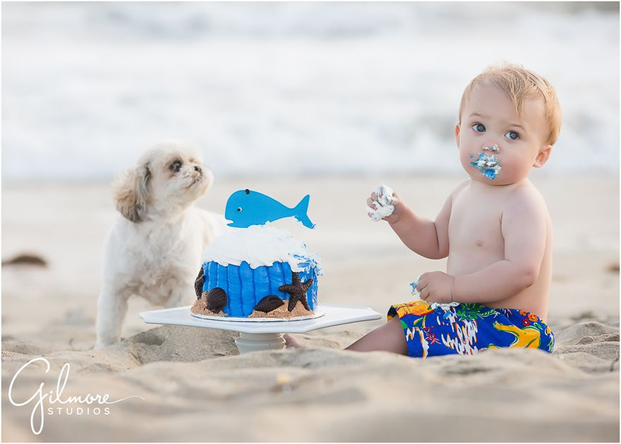 Foster S 1st Birthday Cake Smash Portrait Session Huntington