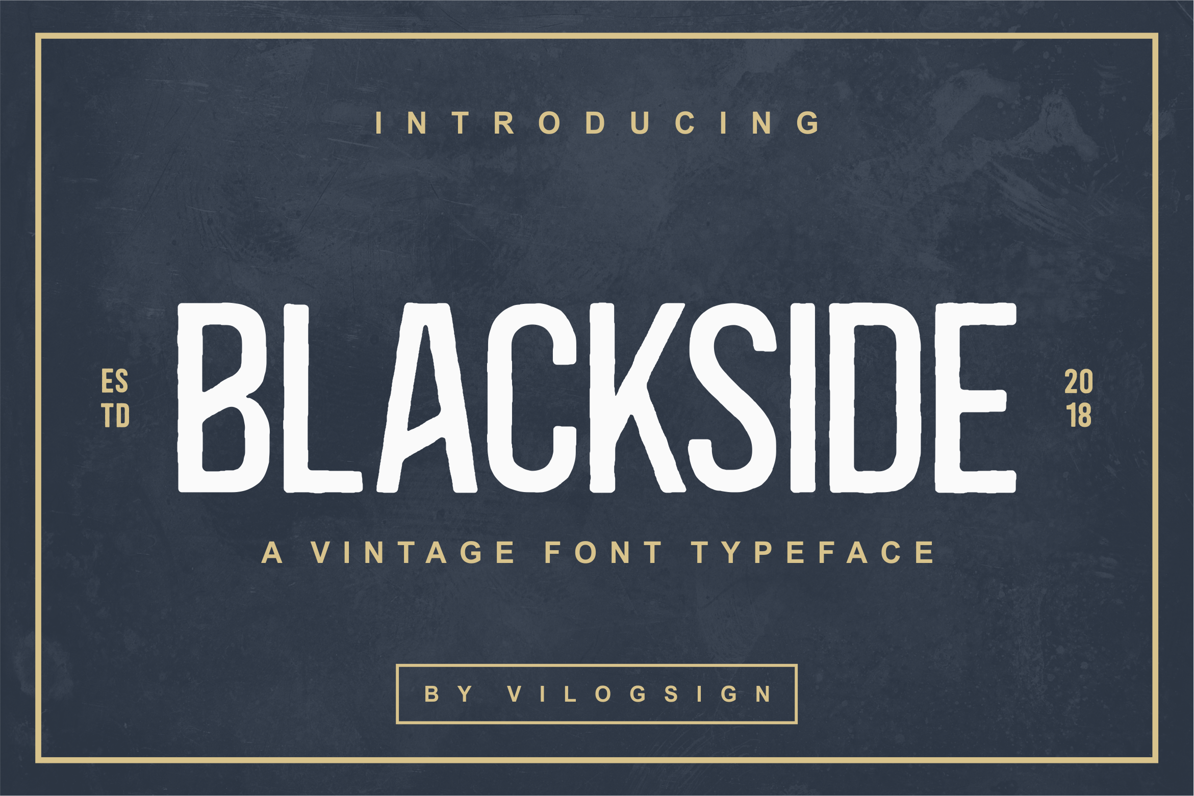 The Blackside Is A Vintage Font Family With A Round And Rough Touch It Has A Natural Feel And Is Vintage Fonts Rustic Font Fonts