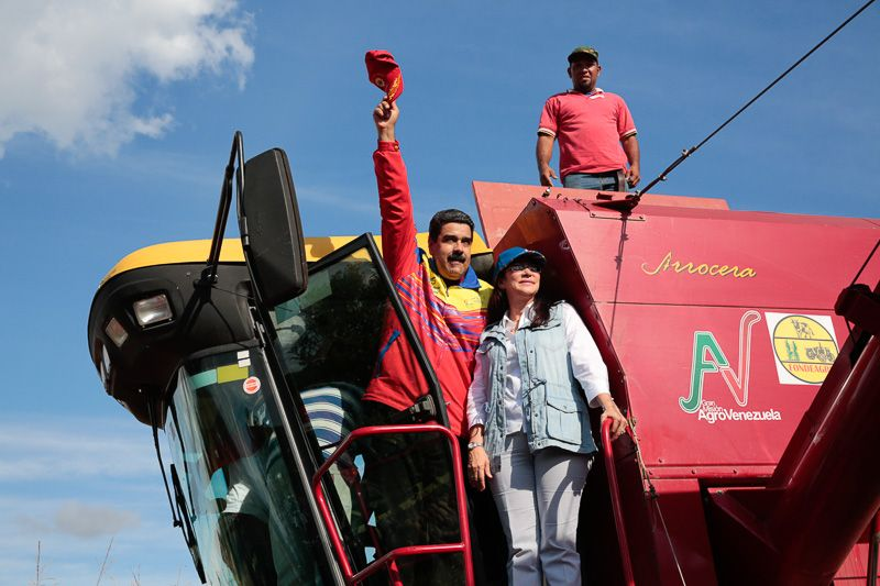 Aprobados más de Bs. 400 millones para productores de la Patria https://t.co/vhr0Ou7Fyr #Venezuela