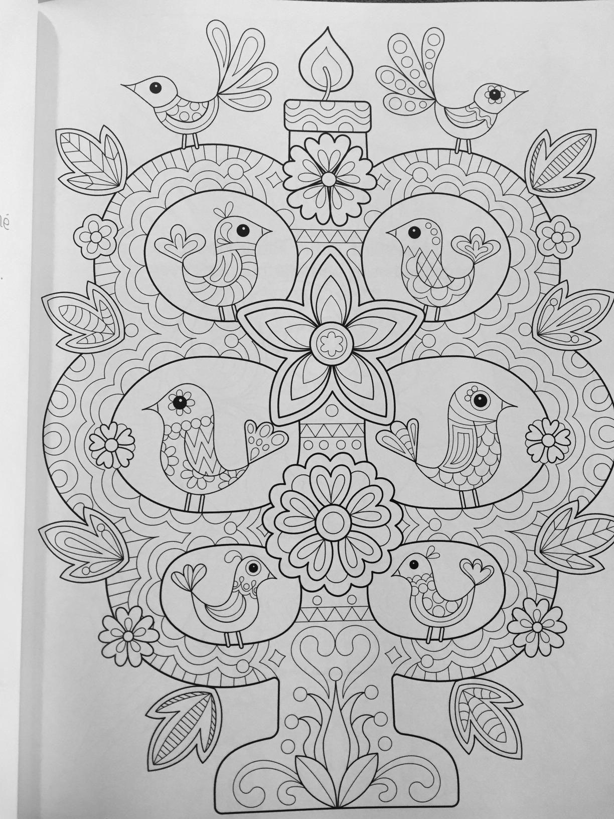 Free Spirit Coloring Book Is Fun Thaneeya Mcardle 9781574219975 Amazon