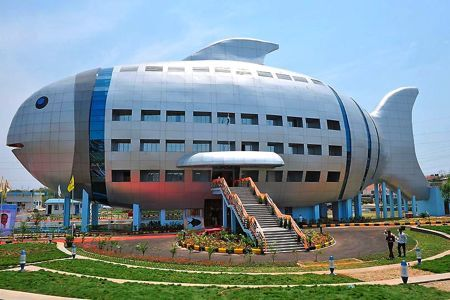 Scientists Develop Aquaculture in the Belly of a Giant Fish: National Fisheries Development Office, India