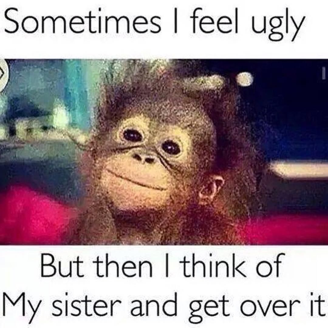 "Sister Funny Quotes Tag Your Ugly Sister ""  Humor  Pinterest  Funny Pictures Memes"
