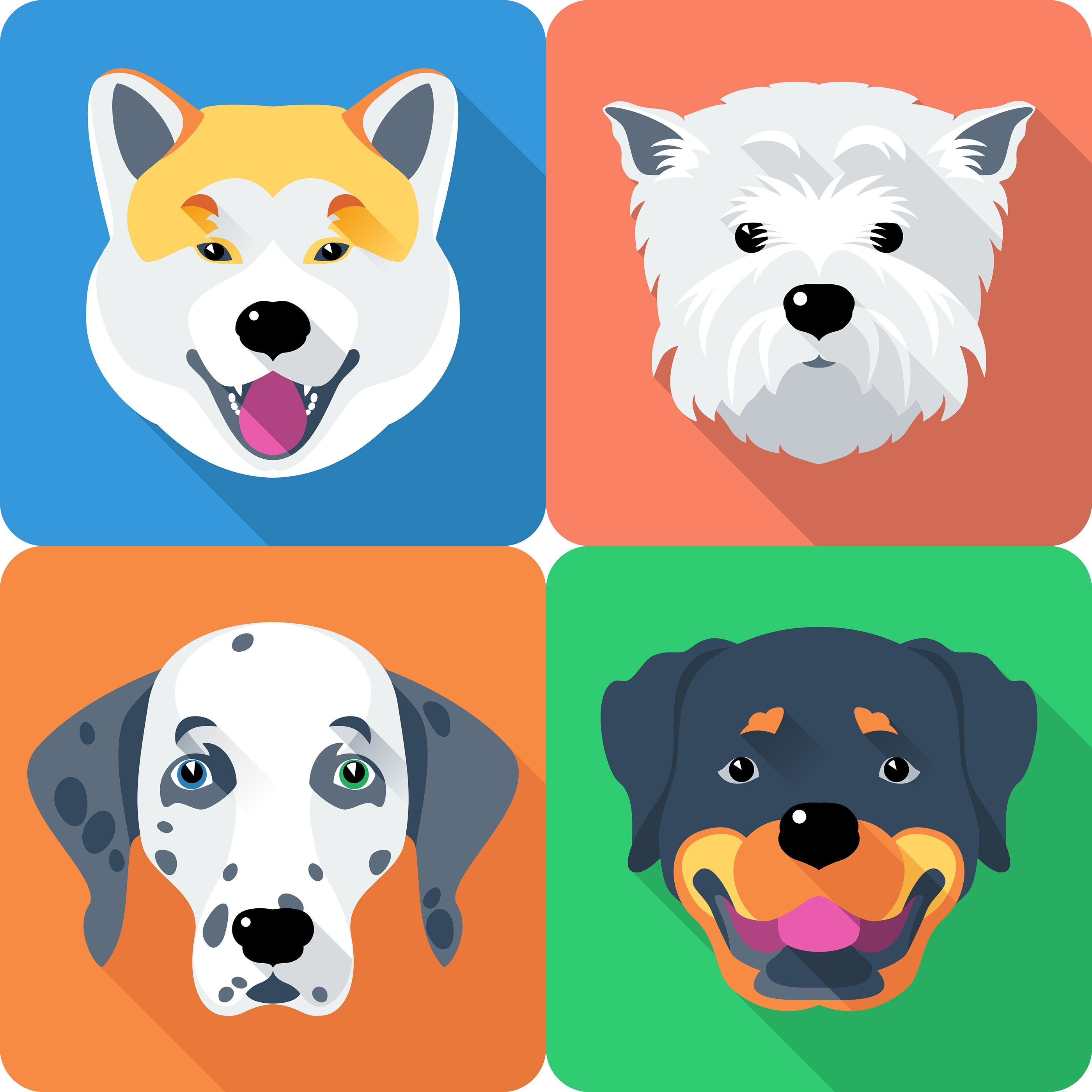 Set Icon Flat Design For Dog Head Different Breeds On Behance Dog Icon Face Icon Dog Face