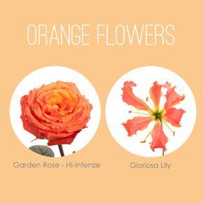 Il nostro preferito: Fiori arancioni