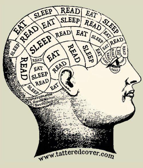 a dramaturg's brain (with extra sleep for funsies).  ;)