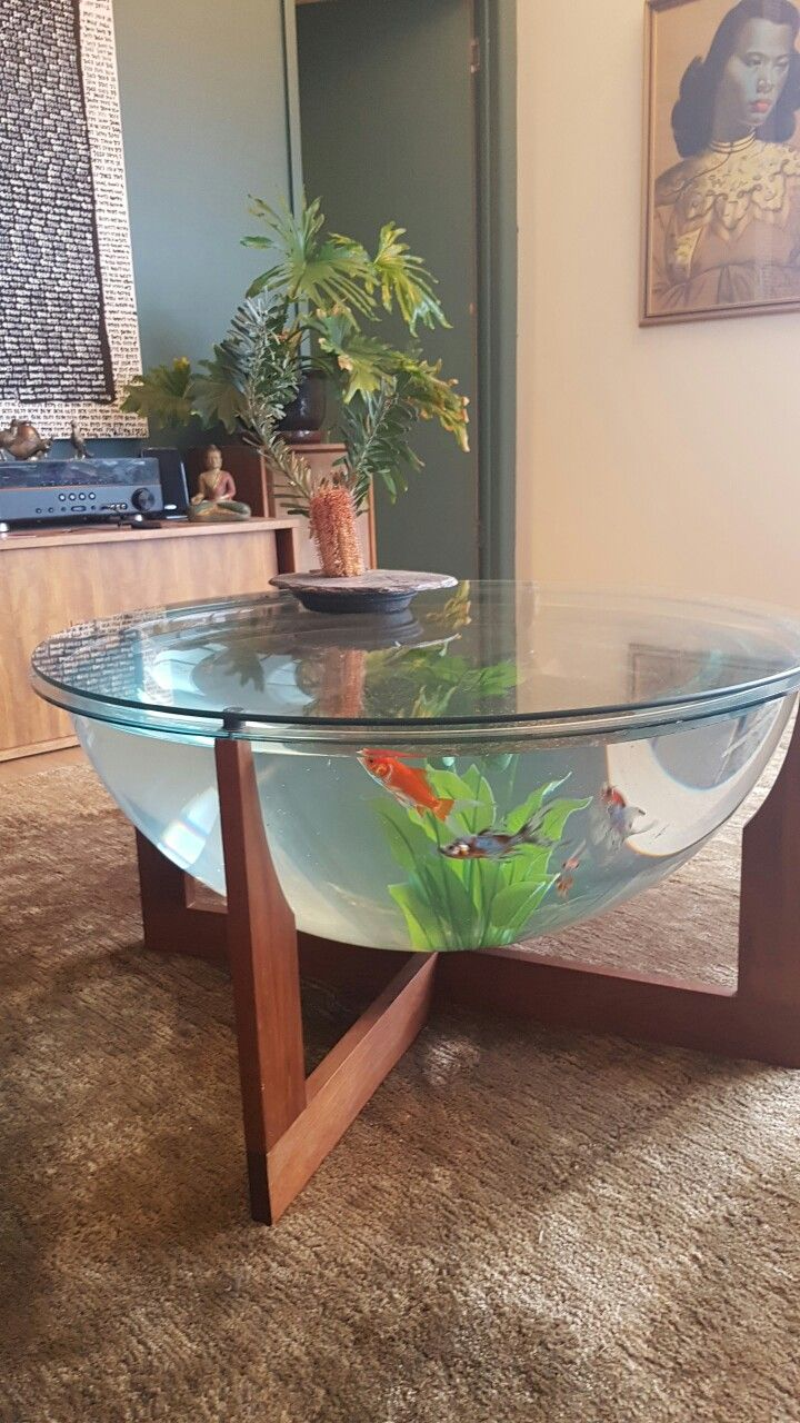 Aquarium Living Room Decor: Retro Mid-century Danish Design Fish Tank Terrarium Coffee