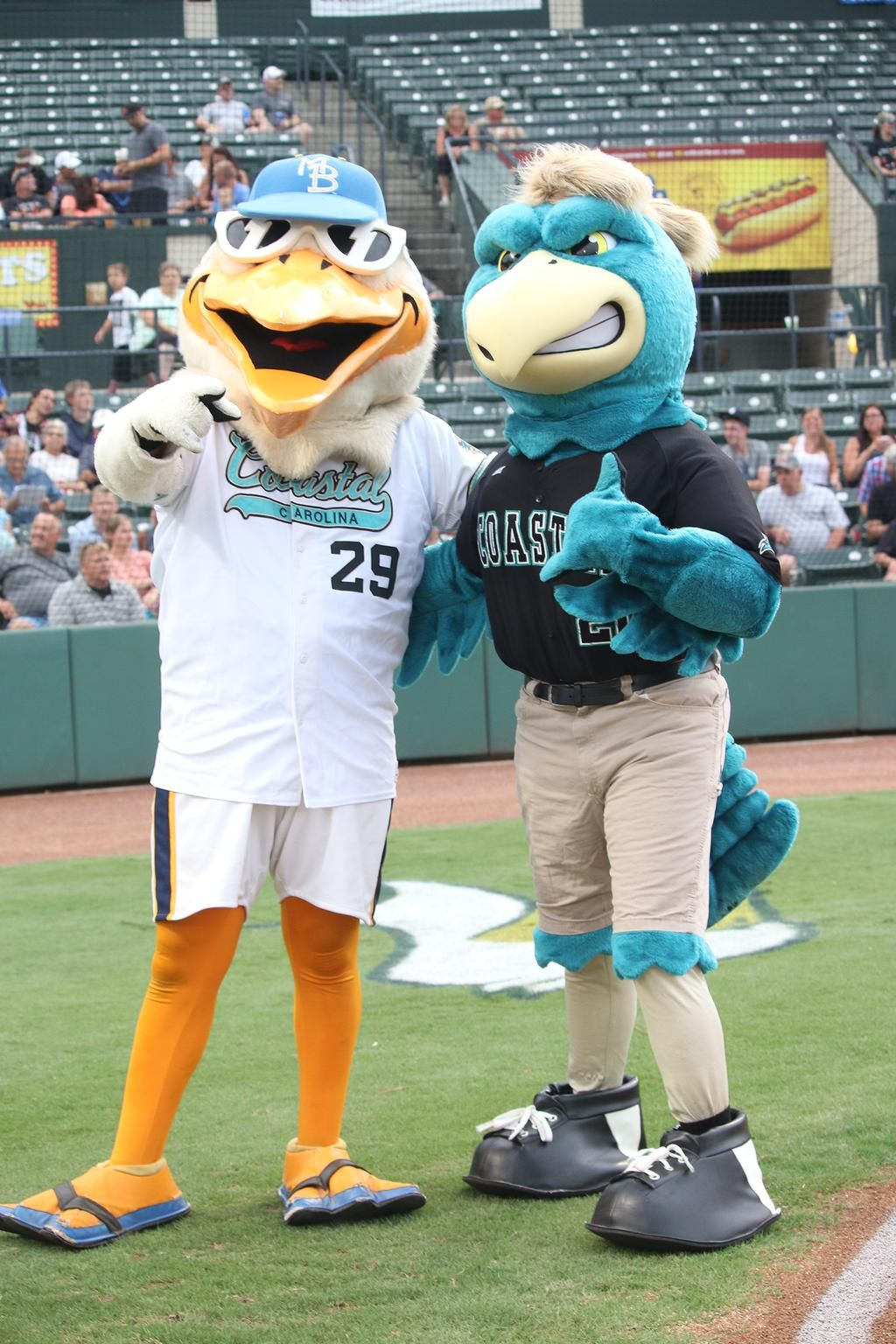 Chauncey Hanging Out With Splash The Myrtle Beach Pelicans Mascotat Their College Night