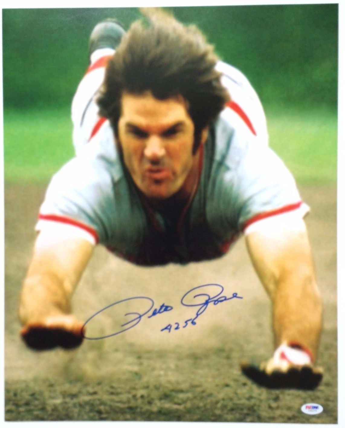 Pete Rose Reds Signed 16x20 Head First Slide Photo