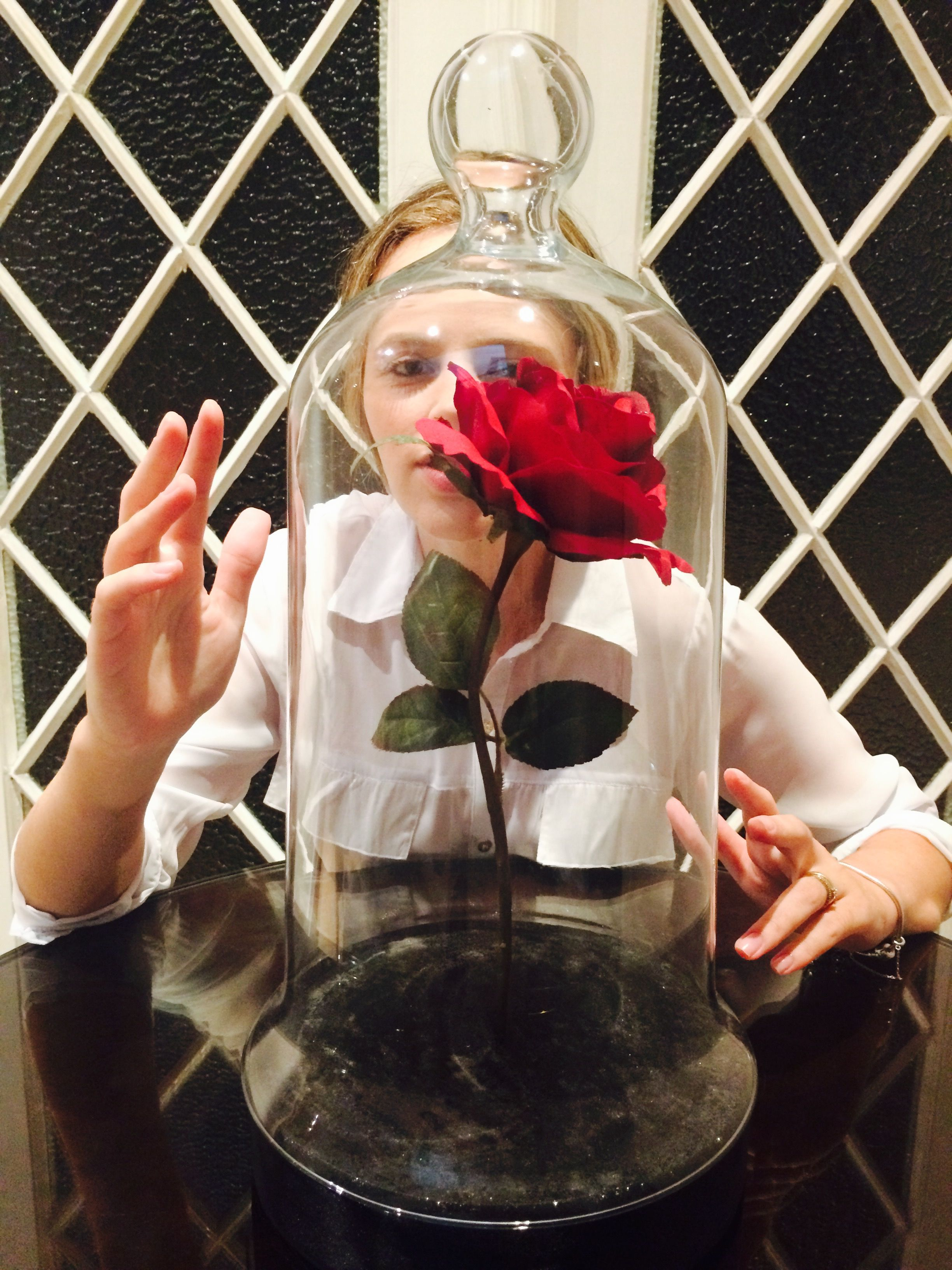 Beauty And The Beast Red Rose Studiopennoflores Pennoflores