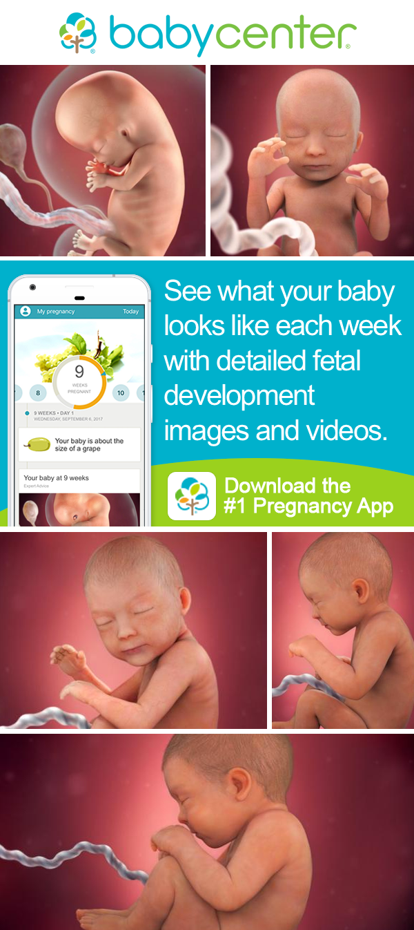 Track your pregnancy and babys development with the babycenter track your pregnancy and babys development with the babycenter app download the award winning nvjuhfo Gallery