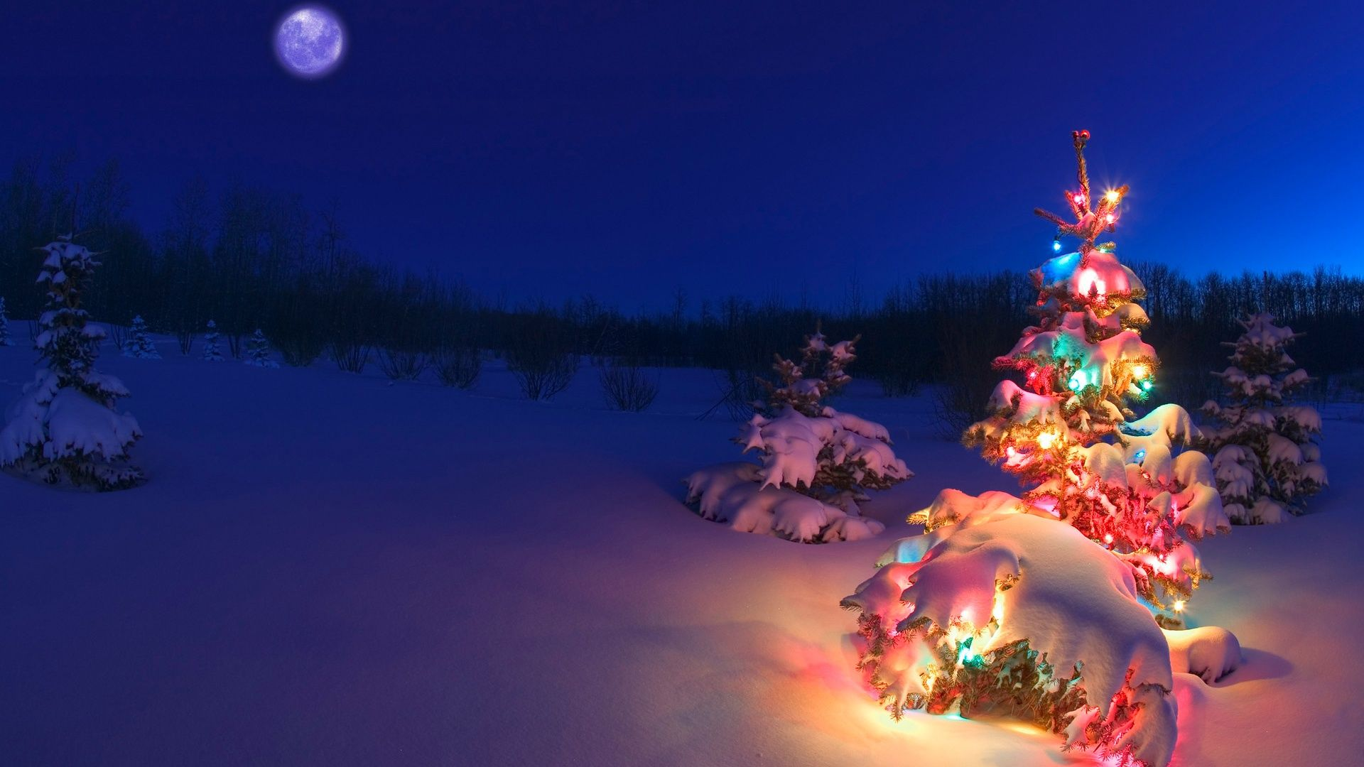 Hd wallpaper xmas - Lightning Christmas Tree In The Snow Hd Winter Wallpaper Christmas Easter Valentine S Day And Many Other Holidays Wallpapers
