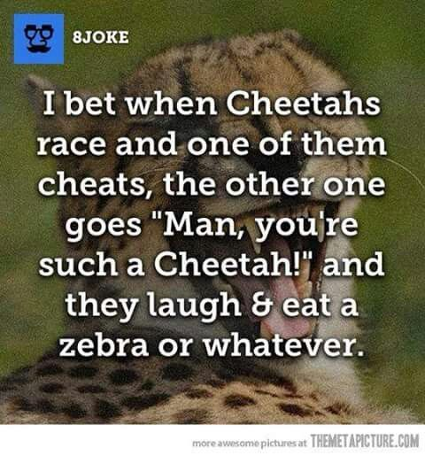 I laughed way too much at this, ha ha ha!