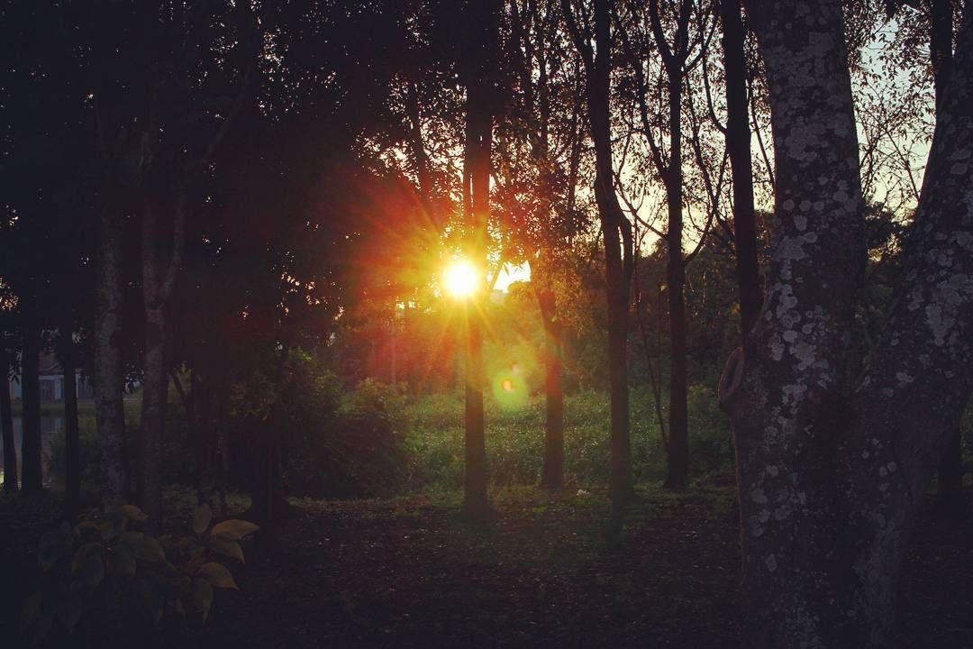 Sun !!! #naturephotography #natureza #nature #photooftheday #brazil #catalao #sun