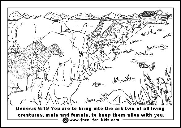 Noahs Ark Colouring Pictures Sunday School Coloring Pages