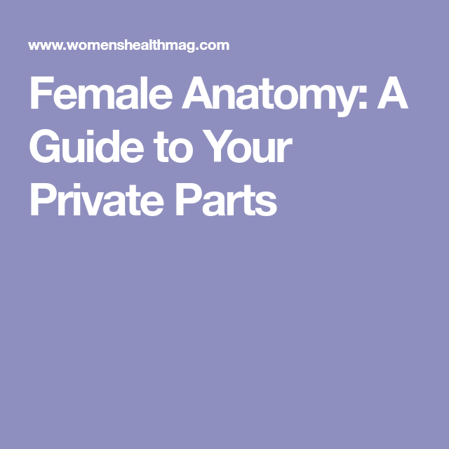 Your Private Parts A Lesson In Female Anatomy