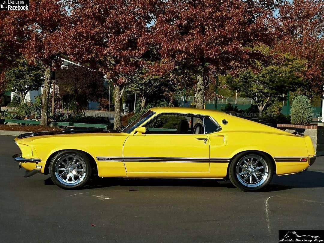 ** 1969 Ford Pin