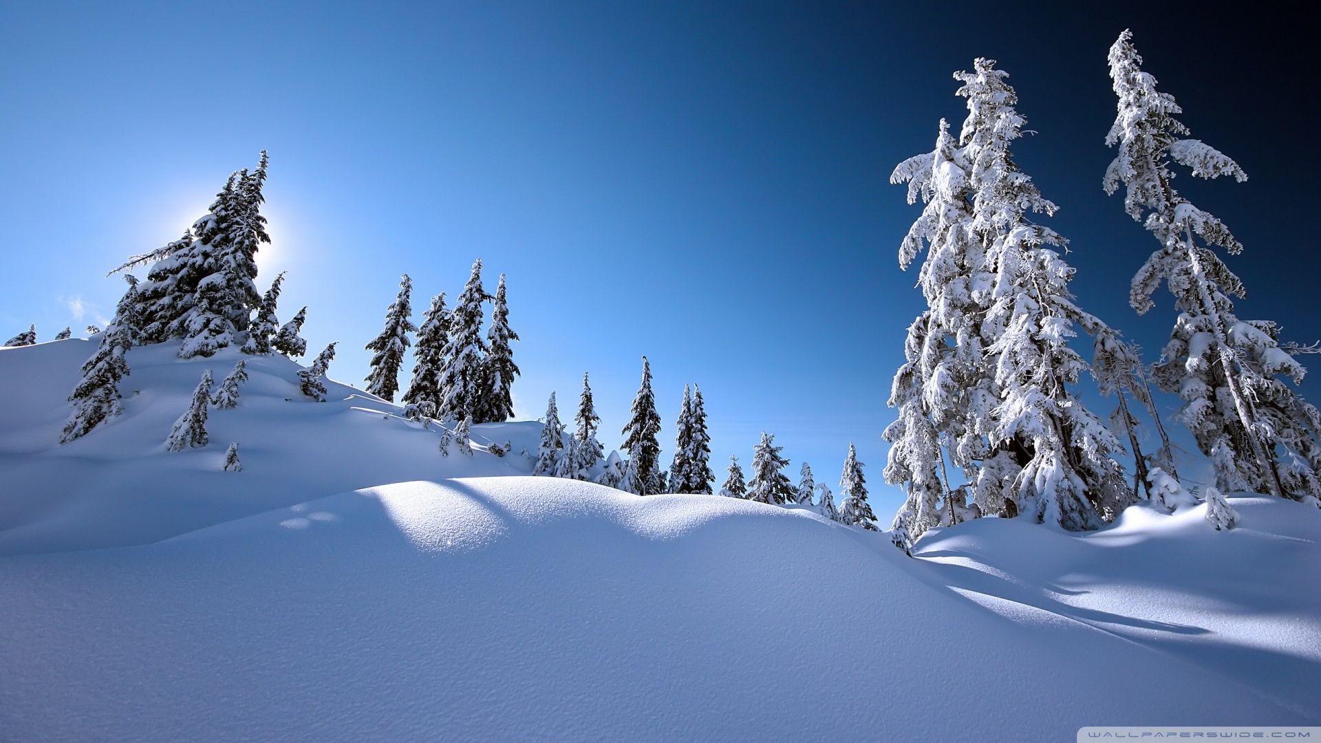 Download Beautiful Winter Scenery Hd Wallpaper Winter Scenery