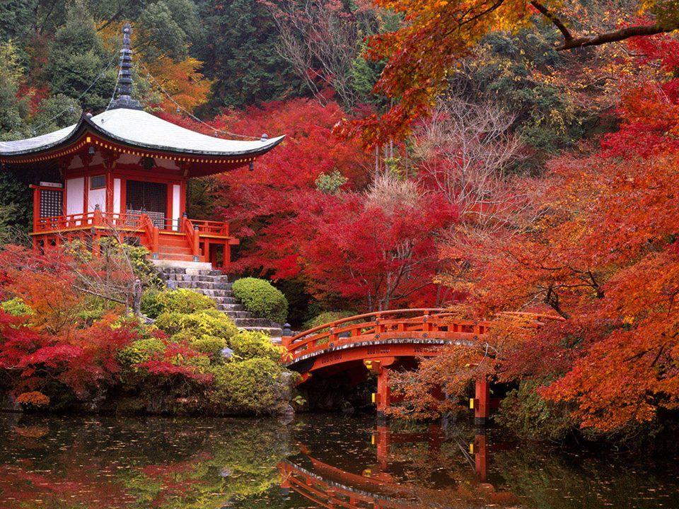 Japan - Autumn