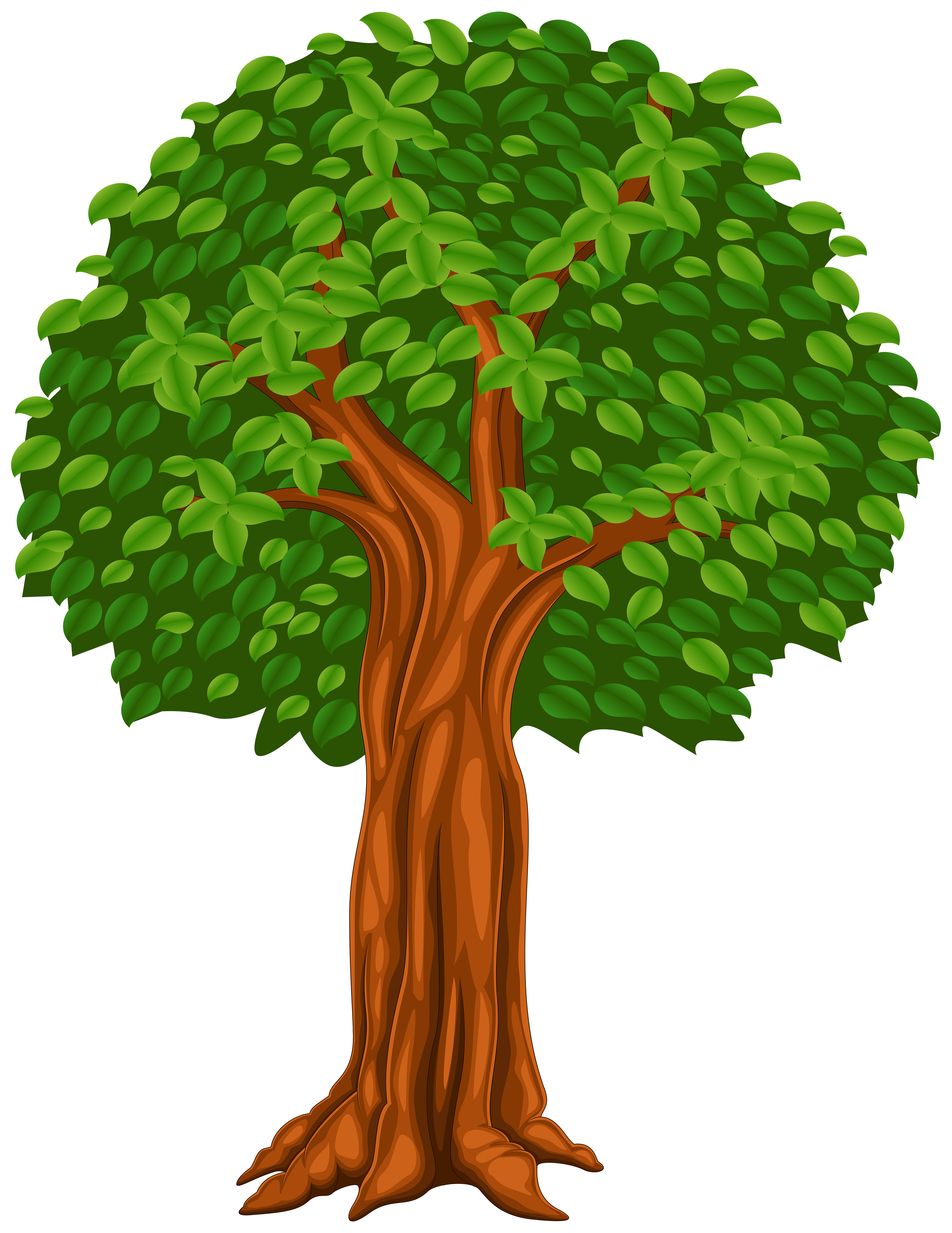 Tree Cartoon Png Clip Art Image Gallery Yopriceville High Quality Images And Transparent Png Free Clipart Cartoons Png Art Drawings For Kids Tree Art