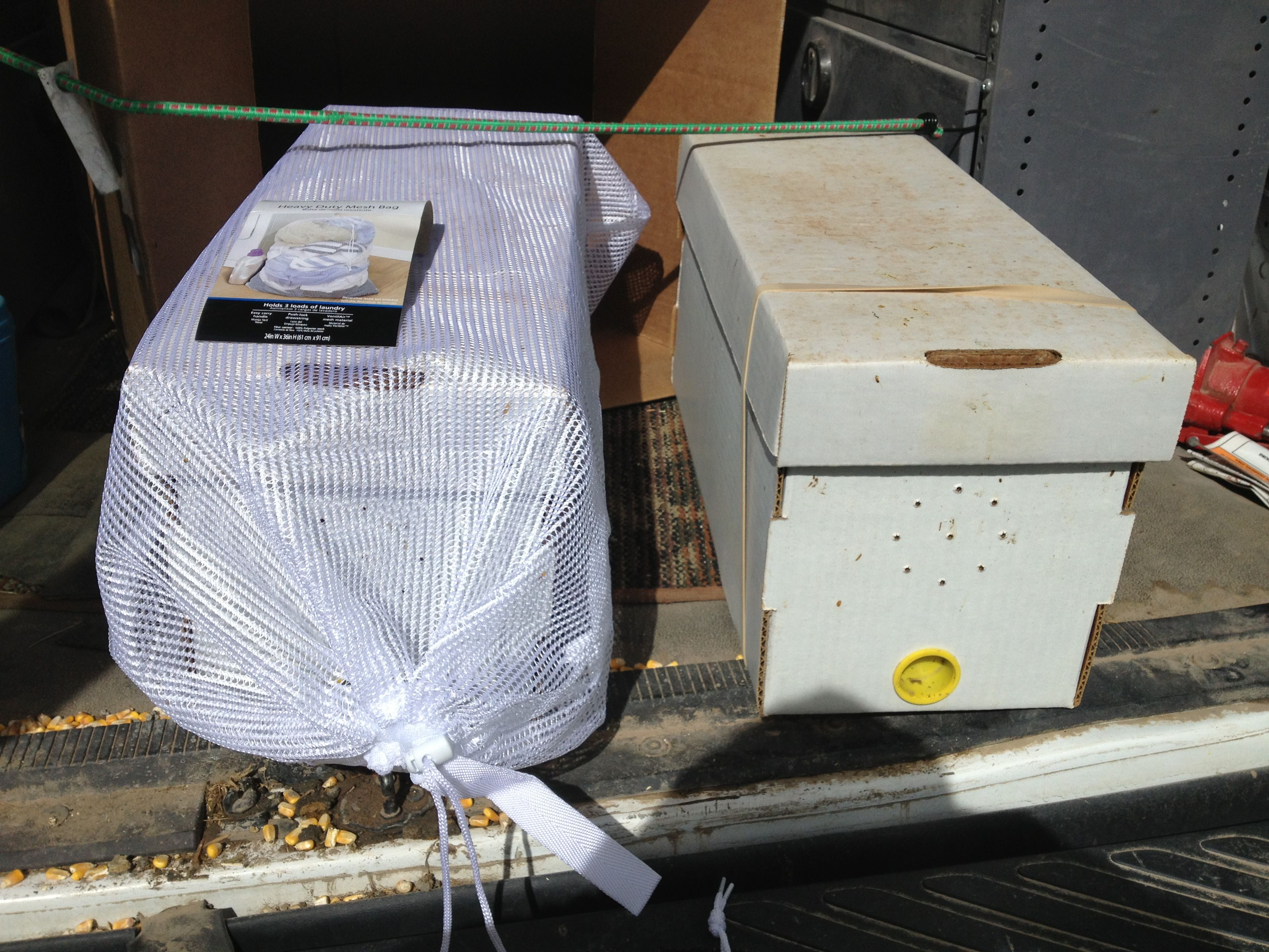 Installing A 5 Frame Nuc And Or 3  Package Bees
