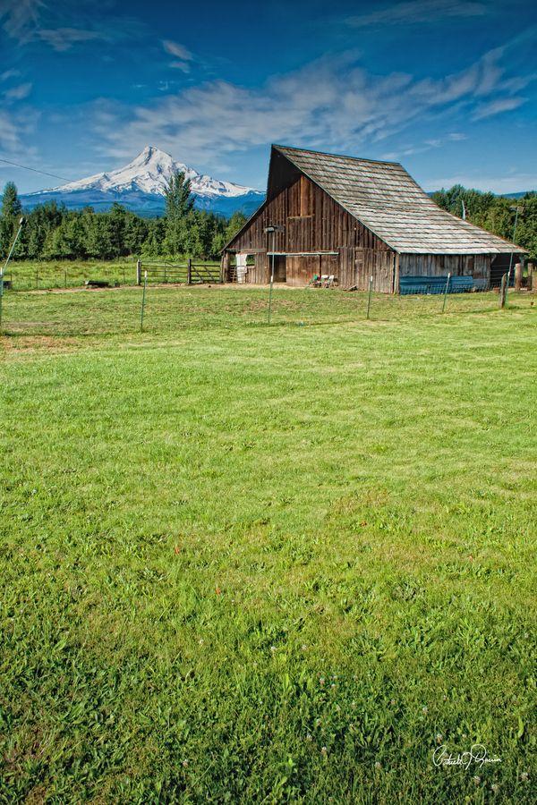 Mt. Hood, Oregon farm. Old barns, Country barns, Oregon