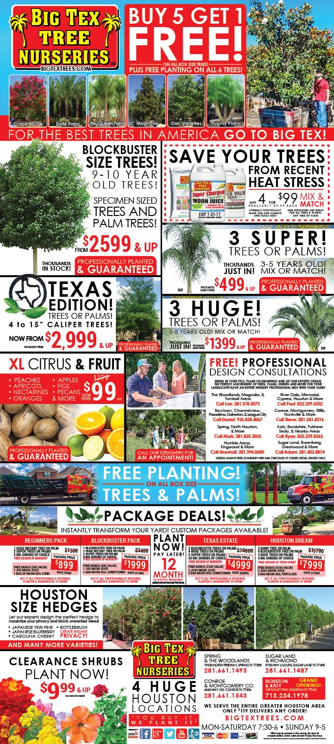 The Cur Ad And Specials From Tex Tree Nurseries Are Right Here
