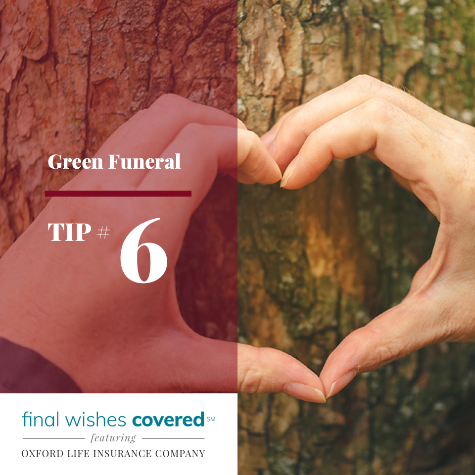 Green Funeral Tip #6: Ask that in lieu of flowers ...