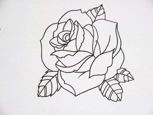 Photo of rose outline 3