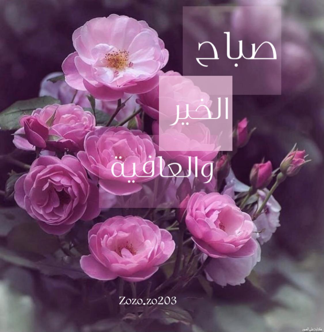صباح الخير Good Morning Gif Good Morning Flowers Morning Flowers