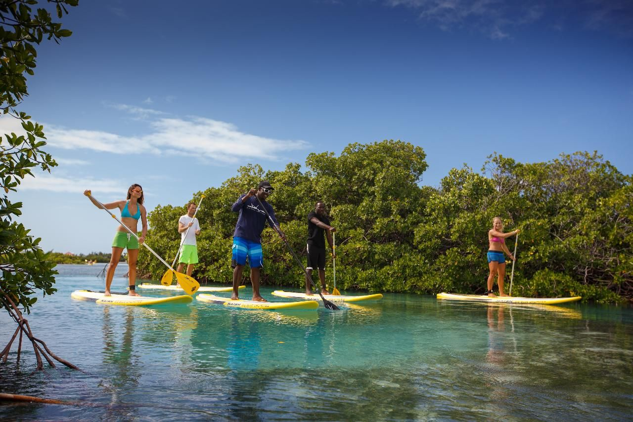 Classic Stand Up Paddleboard Ecotourism, Paddle boarding